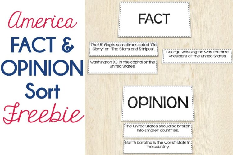 America: Fact and Opinion Sort